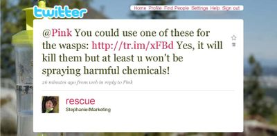 Pink wasp reply