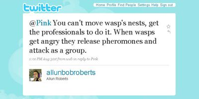 Twitter _ Allun Roberts_ @Pink You can't move wasp' ...