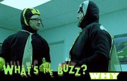 Buzz_postcard