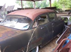Yj_nest_in_old_car_1
